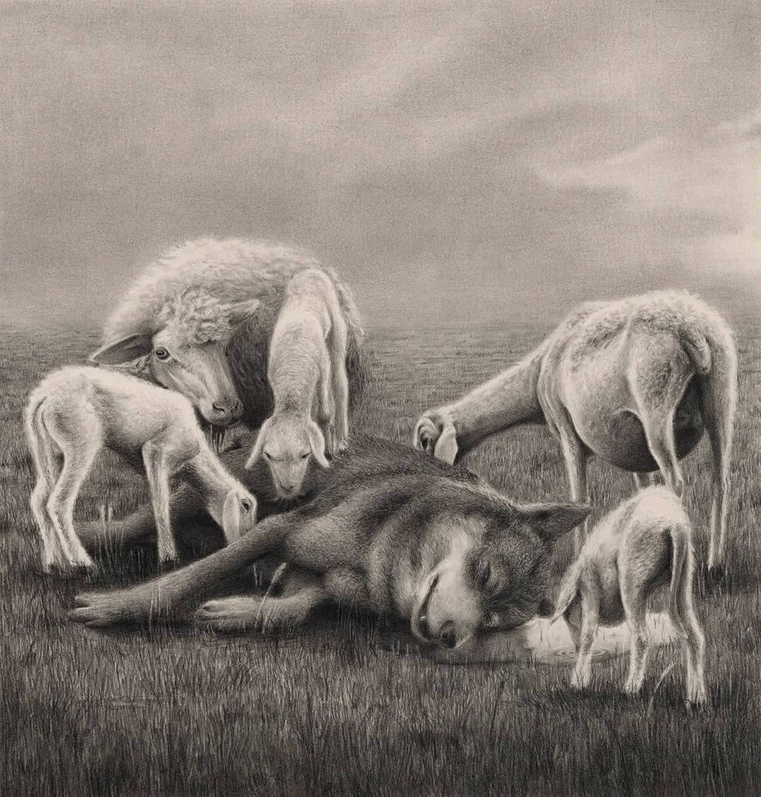 Graphite drawing of sheep feasting on a wolf by Carlos Fernández the Penrider